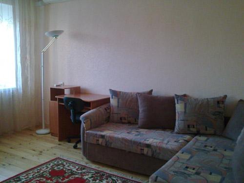 1-комнатная квартира посуточно в Днепропетровске. Бабушкинский район, ул. Гопнер, 1а. Фото 1