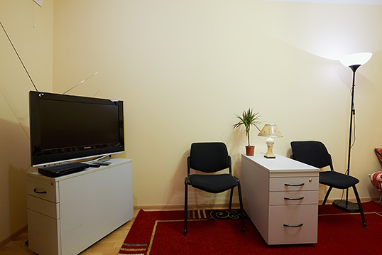 1-комнатная квартира посуточно в Львове. Галицкий район, ул. Витовского, 19. Фото 1