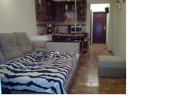 1-комнатная квартира посуточно в Одессе. Приморский район, ул. Канатная, 102. Фото 1