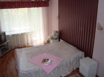 1-комнатная квартира посуточно в Николаеве. Центральный район, ул. Дзержинского, 49. Фото 1