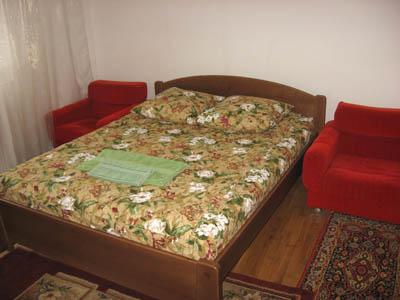1-комнатная квартира посуточно в Ужгороде. ул. Подгорная, 3. Фото 1