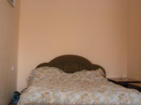 1-комнатная квартира посуточно в Киеве. Шевченковский район, Коперника. Фото 1