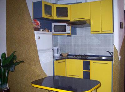 1-комнатная квартира посуточно в Львове. Шевченковский район, ул. Грекова, 8. Фото 1