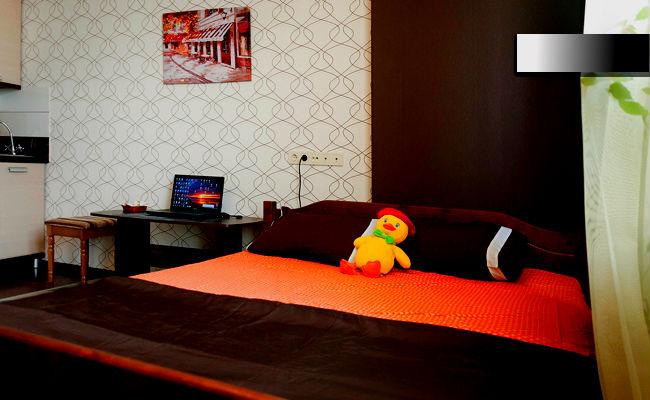 1-комнатная квартира посуточно в Одессе. Приморский район, ул. Пантелеймоновская, 112. Фото 1