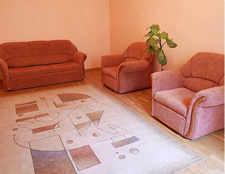 1-комнатная квартира посуточно в Львове. Галицкий район, ул. Стефаника,. Фото 1