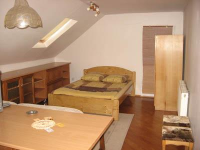 1-комнатная квартира посуточно в Ужгороде. ул. Подгорная, 22. Фото 1