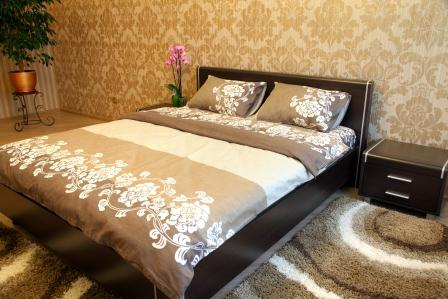 1-комнатная квартира посуточно в Виннице. Ленинский район, ул. Зодчих, 9. Фото 1