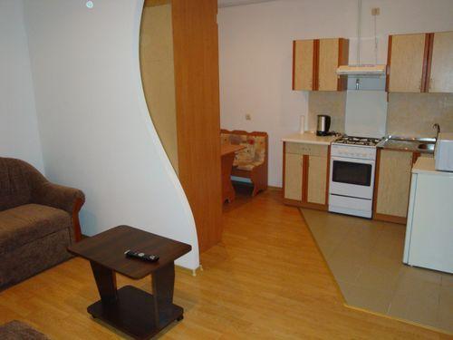 1-комнатная квартира посуточно в Львове. Лычаковский район, ул. К. Левицкого, 78. Фото 1