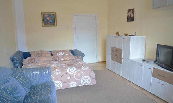 1-комнатная квартира посуточно в Киеве. Голосеевский район, ул. Горького, 41. Фото 1