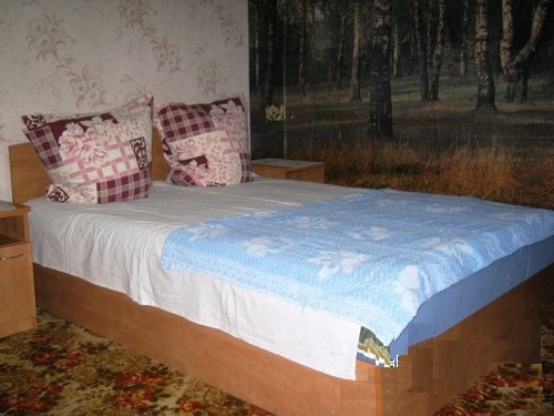 2-комнатная квартира посуточно в Кирилловке. ул. Носкова, 21. Фото 1