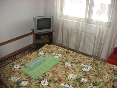 Однокомнатная квартирапосуточно в Ужгороде, ул. Подгорная, 3