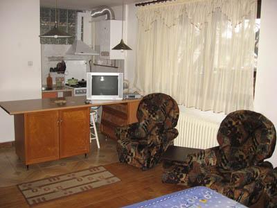 Однокомнатная квартирапосуточно в Ужгороде. ул. Подгорная, 1. Фото 1