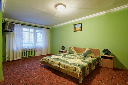 1-комнатная квартира посуточно в Львове. Шевченковский район, ул. Гринченко, 5. Фото 1